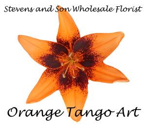 Orange Tango Art