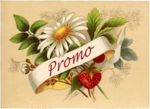 Promo copy