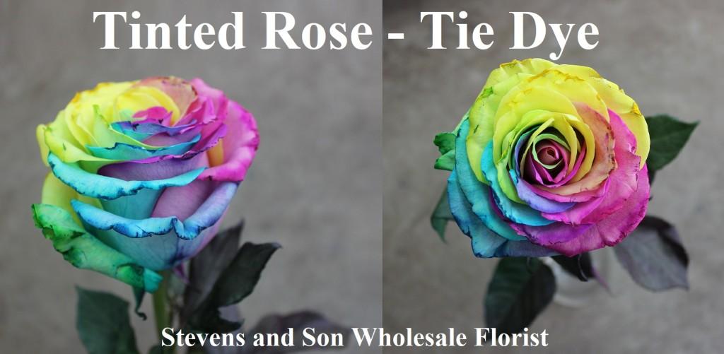 Tinted Rose - Tie Dye, Photo Credit Allison Linder