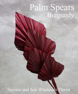 Palm Spears - Burgundy - Photo credit Allison Linder