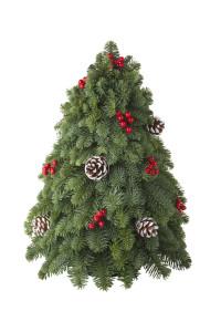 D-127 Christmas Tree Centerpiece